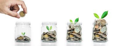 As economias do dinheiro, mão puseram moedas no mealheiro com incandescência das plantas Fotografia de Stock Royalty Free