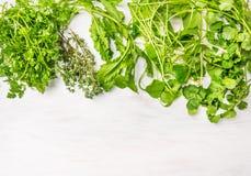 As ervas misturam para a salada e os cursos no fundo de madeira branco Fotos de Stock