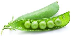 As ervilhas frescas são contidas dentro de uma vagem Imagem de Stock