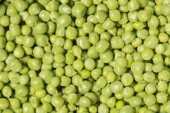 As ervilhas verdes fecham-se acima Imagens de Stock Royalty Free