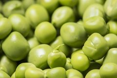As ervilhas verdes fecham-se acima Foto de Stock Royalty Free