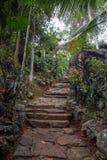 As escadas à casa entre a selva Imagens de Stock Royalty Free