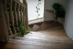 As escadas na luz solar macia e com plantas verdes vão para baixo fotografia de stock