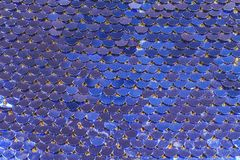 As escalas de peixes brilhantes vislumbram em cores diferentes da prata azul foto de stock