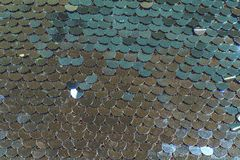 As escalas de peixes brilhantes vislumbram em cores diferentes da prata azul imagem de stock royalty free