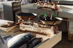 As escalas de peixes do vendedor de peixe cortaram peixes para a venda em semi-exterior, mercado do marisco do ar livre perto da  Foto de Stock