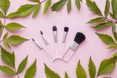 As escovas da composição em um fundo do rosa pastel com planta saem Conceito da beleza Foto de Stock Royalty Free