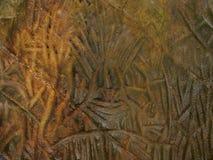 As escritas pictóricos do homem da Idade da Pedra, Edakkal cavam foto de stock