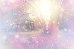 As esferas do espírito recolheram em torno da árvore que emite-se a luz branca dourada ilustração royalty free