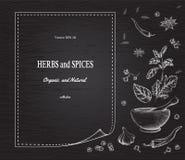 As especiarias e as ervas no fundo enegrecem a placa Fotos de Stock