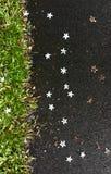 As estrelas caem rapidamente à terra Fotografia de Stock