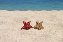 As estrelas de ano novo, Bali, Indonésia Imagem de Stock Royalty Free