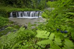 As etapas da rocha da pedra calcária criam uma cachoeira Fotos de Stock Royalty Free