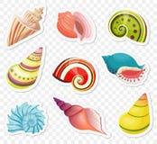As etiquetas dos shell do mar dos desenhos animados do vetor ajustaram-se no fundo alfa transperant Imagens de Stock Royalty Free