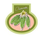 As etiquetas para os produtos vegetais, vector realístico Fotos de Stock