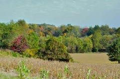 Fall Season has arrive. As far as the eye can see, Fall season finally arrive stock photo