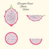 As fatias exóticas do fruto do pitahaya do vetor ajustaram-se no estilo liso isolado Foto de Stock
