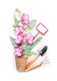 As ferramentas de jardinagem, o potenciômetro com flores planta e o jardim assinam no fundo branco Imagem de Stock