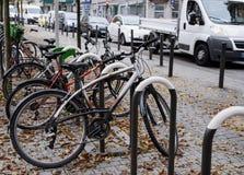 As fileiras das bicicletas estacionaram sob árvores coloridas da queda Foto de Stock