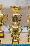 As fileiras dos troféus e das concessões antes de conceder os vencedores 1264 Imagens de Stock Royalty Free