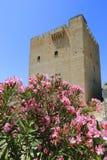 As flores agradáveis aproximam a torre do castelo Foto de Stock Royalty Free