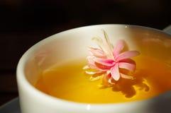As flores agradáveis no copo do chá na natureza iluminam-se Fotografia de Stock Royalty Free