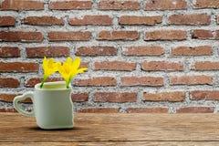 As flores amarelas frescas no copo branco com coração deram forma ao suporte na tabela de madeira do grunge na parede de tijolo v foto de stock royalty free