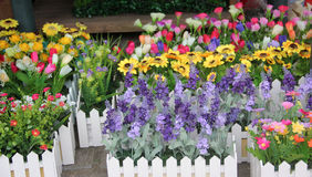 As flores bonitas no florista Fotografia de Stock Royalty Free