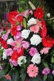 As flores bonitas no florista Imagem de Stock Royalty Free