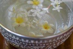 As flores brancas flutuam na bacia, dia de Songkran, festival de Thail foto de stock