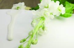 As flores brancas ramificam em uma folha de papel, creme branco de gotejamento, leite, em um fundo branco imagens de stock