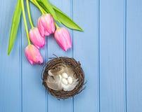 As flores coloridas Vernal com ` s do pássaro aninham a decoração Imagens de Stock