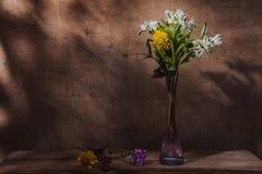 As flores coloriram a vida imóvel Fotos de Stock