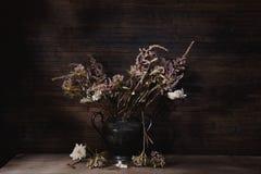 As flores coloriram a vida imóvel Fotografia de Stock