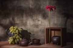 As flores coloriram a vida imóvel Fotografia de Stock Royalty Free