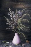 As flores coloriram a vida imóvel Foto de Stock Royalty Free