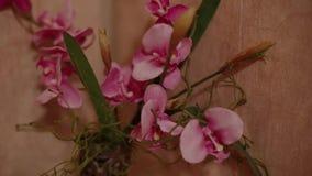 As flores cor-de-rosa estão em um vaso na prateleira filme