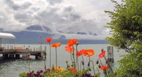 As flores crescem perto de um lago e das montanhas Imagens de Stock