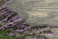 As flores da planta medicinal da alfazema encontram-se na superfície de madeira imagem de stock royalty free