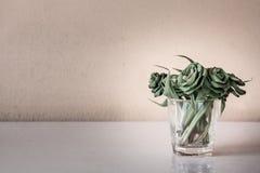 As flores de Pandan do ofício murcham Fotos de Stock Royalty Free