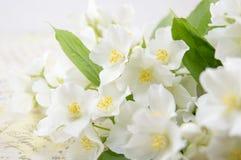 As flores do lírio em um decoupage decoraram a tabela Fotografia de Stock