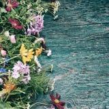 As flores do verão zombam acima Fotos de Stock Royalty Free