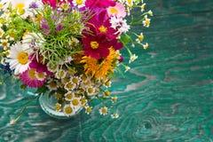 As flores do verão zombam acima Fotos de Stock