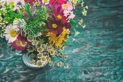 As flores do verão zombam acima Foto de Stock
