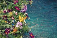 As flores do verão zombam acima Fotografia de Stock Royalty Free