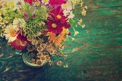 As flores do verão zombam acima Imagem de Stock