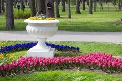 As flores e as camas de flor na cidade estacionam na primavera Imagem de Stock