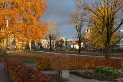 as flores e as construções das árvores em torno de uma cidade estacionam em novembro no au Imagem de Stock Royalty Free