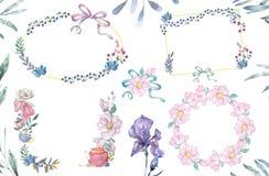 As flores e as folhas da aquarela envolvem-se Ilustração ajustada dos quadros do ouro Azeitona do círculo e ramo do clipart da cu ilustração stock