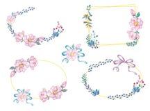 As flores e as folhas da aquarela envolvem-se Ilustração ajustada dos quadros do ouro quadrado e ramo do clipart da curva para a  ilustração stock
